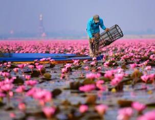 Photo of Udon Thani