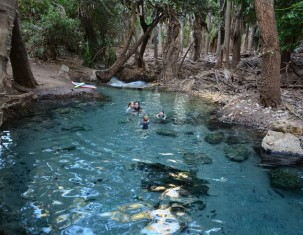 Photo of Innot Hot Springs