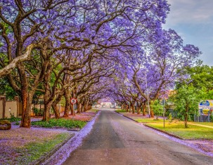 Photo of Pretoria