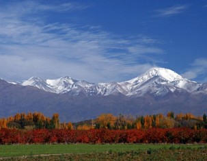 Photo of Mendoza