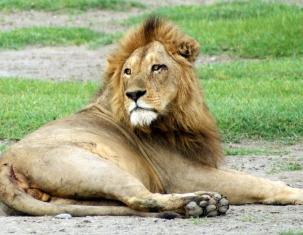 Photo of Tansania