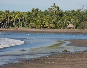 Photo of Santa Catalina