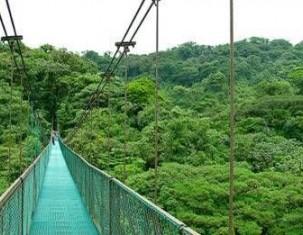 Photo of Monteverde