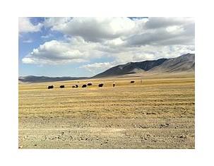 Photo of Баян-Өлгий аймаг