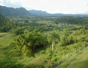 Photo of Pinar del Río