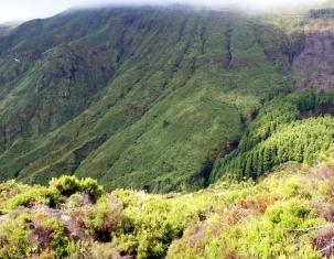 Photo of Isola di Santa Maria