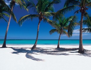 Photo of Punta Cana