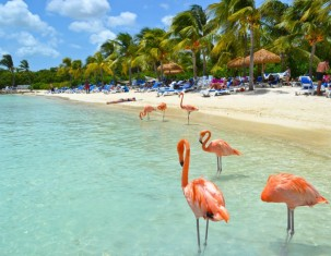 Photo of Aruba