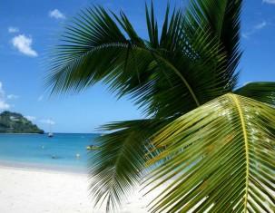 Photo of Martinique