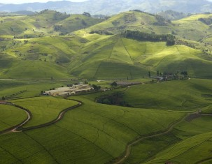 Photo of Ruanda