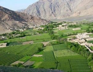Photo of Bagrami