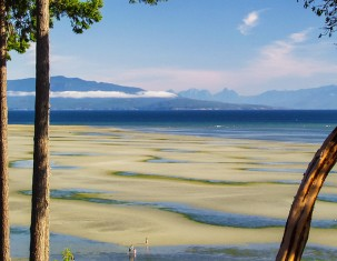 Photo of Qualicum Beach
