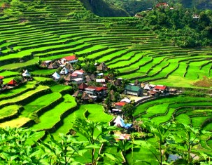 Photo of Banaue