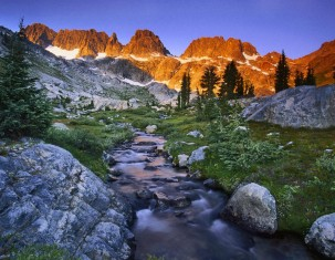 Photo of Wilderness