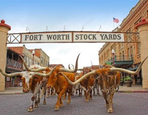 Photo of Fort Worth