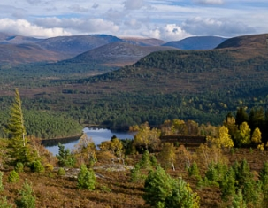 Photo of Aviemore