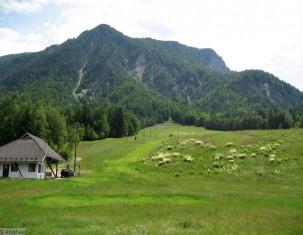 Photo of Mojstrana