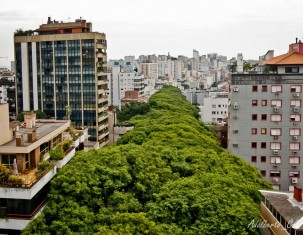 Photo of Porto Alegre