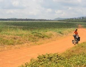 Photo of Nkongsamba