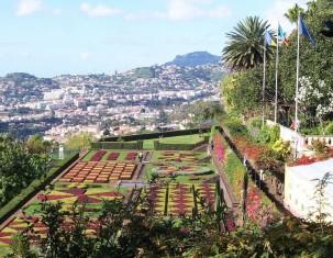 Photo of Funchal