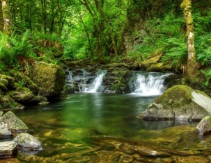 Photo of Ireland