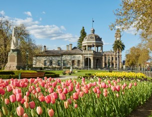 Photo of Bendigo