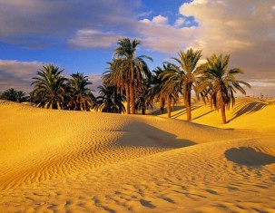 Photo of Niger