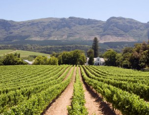 Photo of Paarl