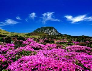 Photo of Jeju