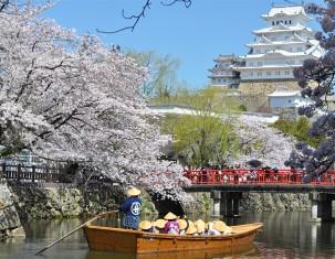 Photo of Himeji