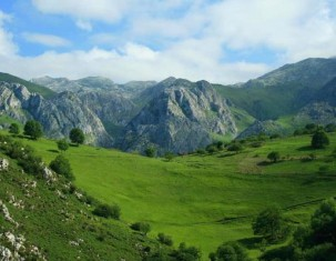 Photo of Cabrales