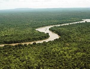 Photo of Гамбия