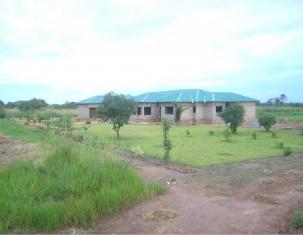 Photo of Ндола