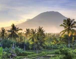 Photo of Индонезия
