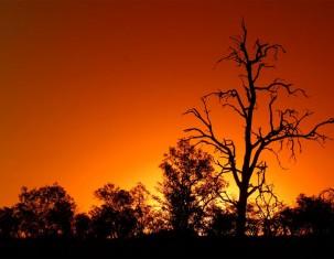 Photo of Свазиленд