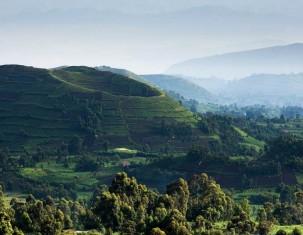 Photo of Уганда