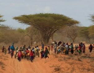 Photo of Somalia