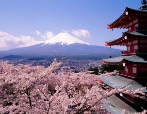 Photo of Kioto