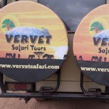 vervet safari tours