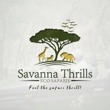 Savanna Thrills Eco safaris