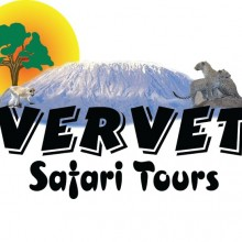vervet safari tours