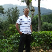 jalaaldeen Jayah