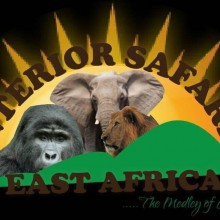 Interior  Safaris