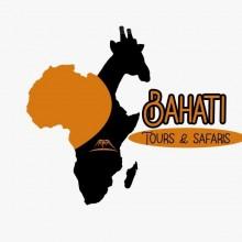 Bahati tours &  Safaris